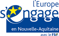 Logo FSE en Nvelle Aquitaine